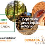 Constitución Clúster Biomasa Galicia